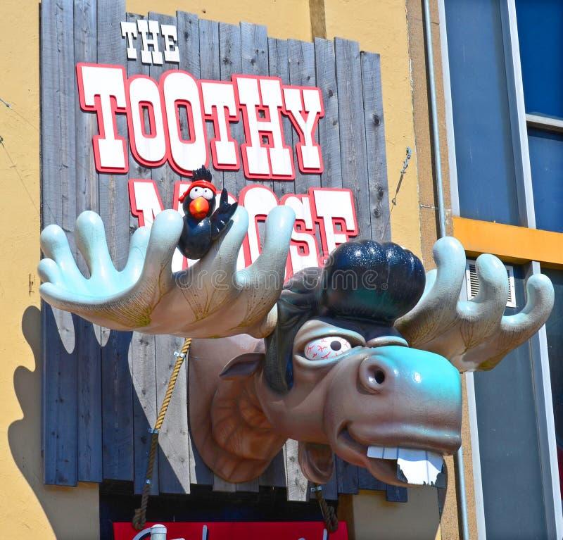 Zeichen von Toothy Elchen stockfotografie