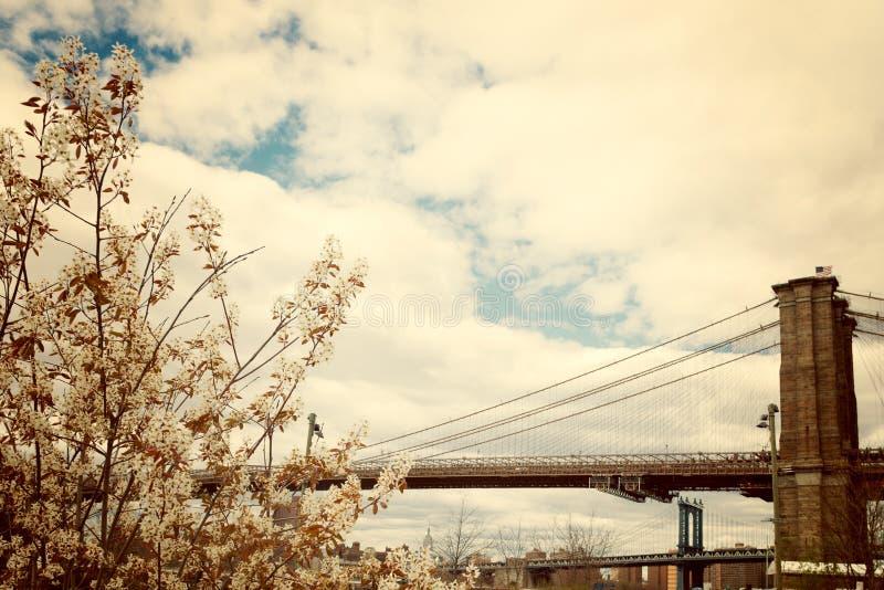Zeichen, Ziegelsteine, nahe der Brooklyn-Brücke stockbild