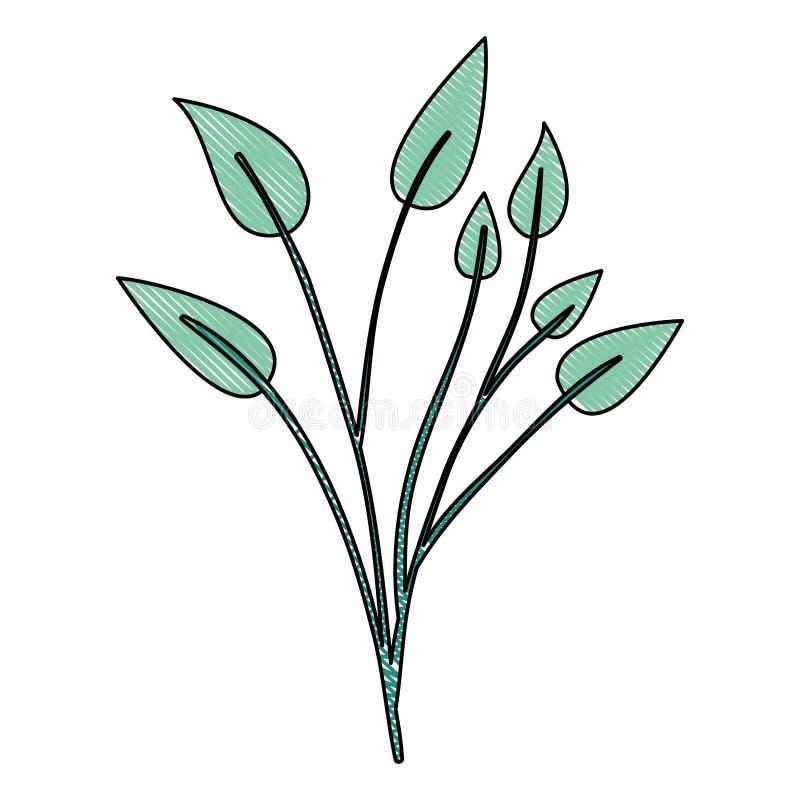 Zeichenstiftschattenbild der grünen hellen Farbe der Niederlassungen mit Blattanlage vektor abbildung