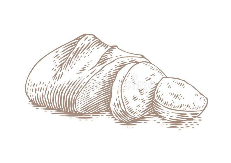 Zeichnen des Weißbrots stock abbildung