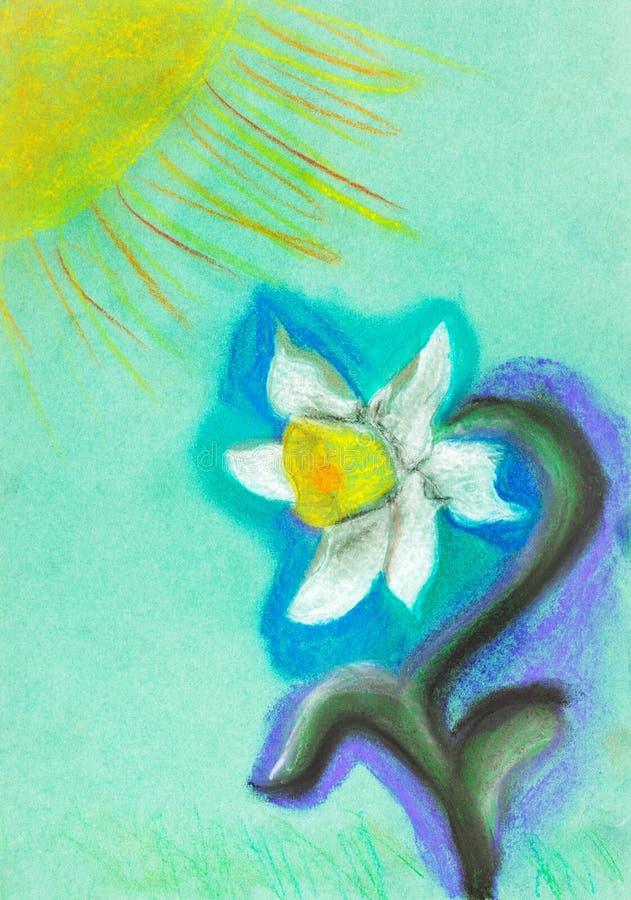 narzissen-blumen-zeichnung stock abbildung. illustration