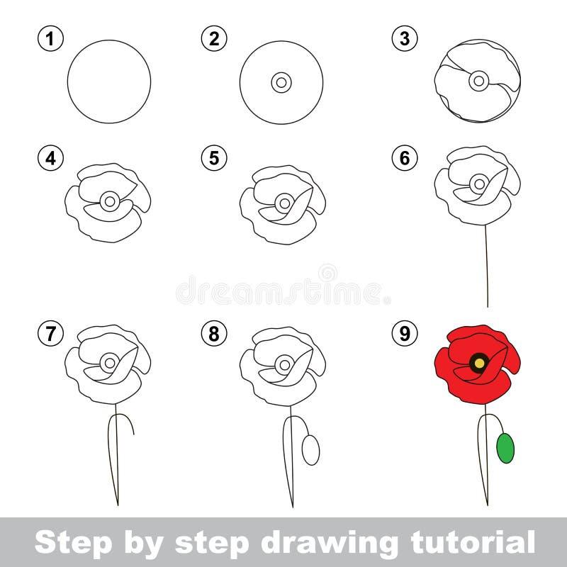 Zeichnendes Tutorium Wie man eine Mohnblume zeichnet lizenzfreie abbildung