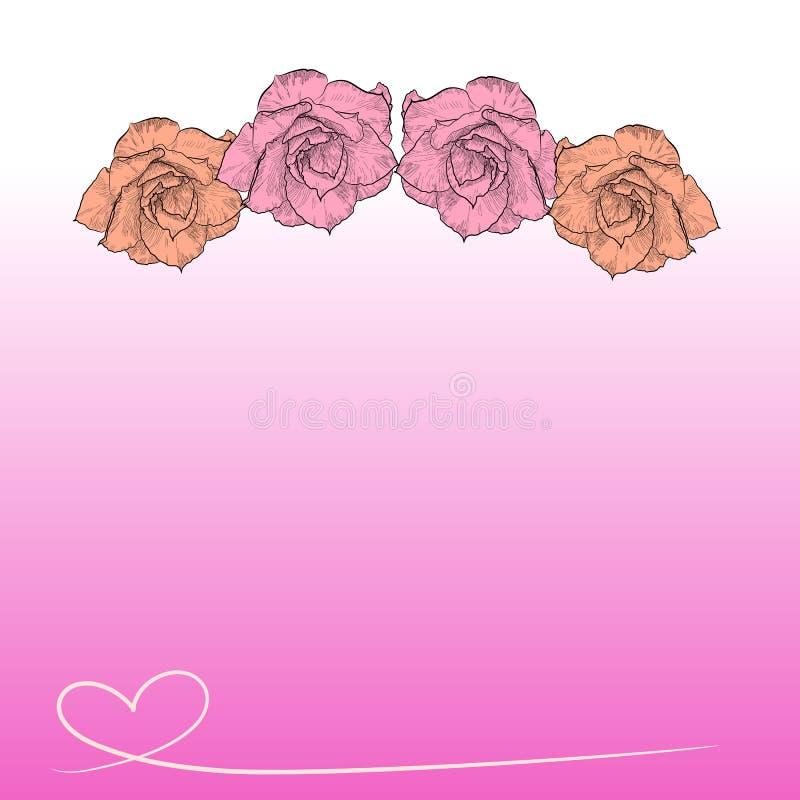 Zeichnung der Wüstenrose auf rosa Hintergrund vektor abbildung
