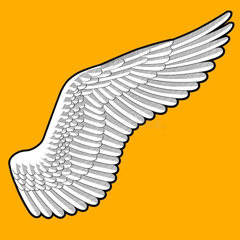 Zeichnung des Flügels des Vogels mit ausführlichen Federn auf orange backgrou vektor abbildung