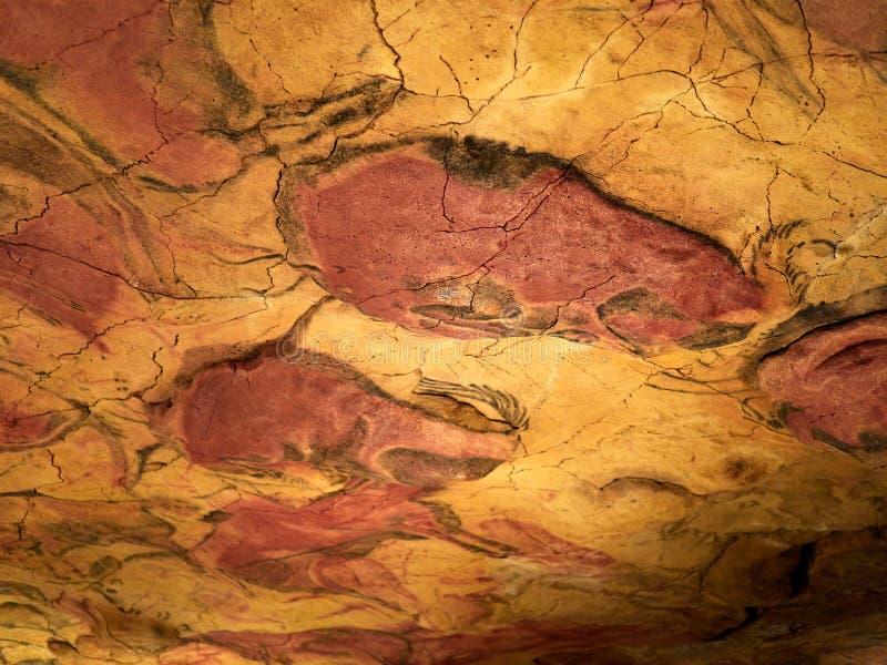 Zeichnungen von der Decke von Altamira höhlen in Santillana Del Mar, Kantabrien, Spanien aus stockfoto