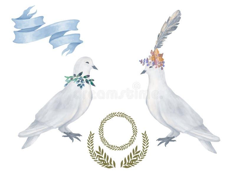 Zeichnungsaquarellvogel-Fliegenfrieden des Taubencliparts tauchte digitaler für die Heiratsfeierillustration, die auf weißem Hint stock abbildung
