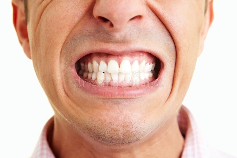 Zeigen der Zähne lizenzfreie stockfotografie
