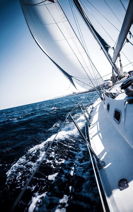 Zeilboot in actie stock foto