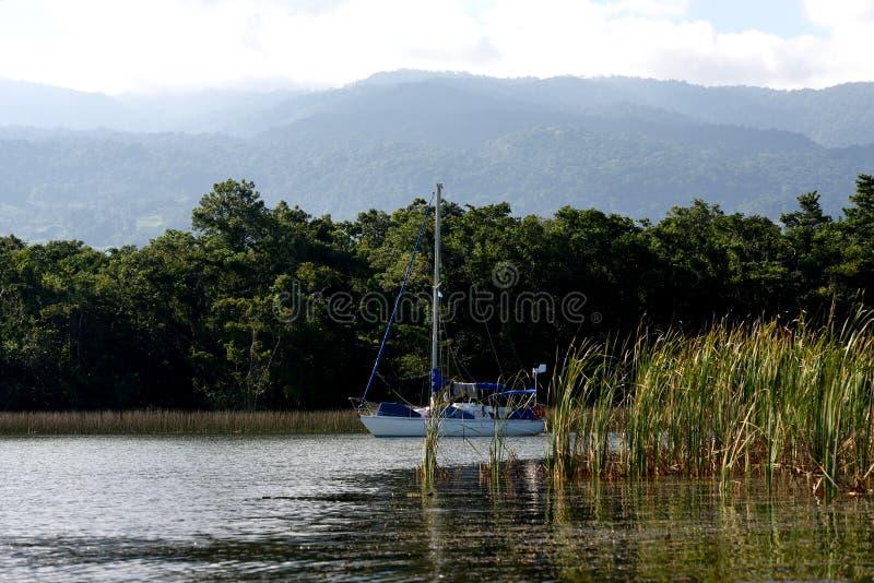 Zeilboot bij ankerplaats op Rio Dulce stock afbeelding