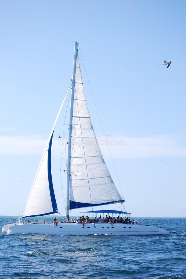 Zeilboot in de oceaan royalty-vrije stock afbeeldingen