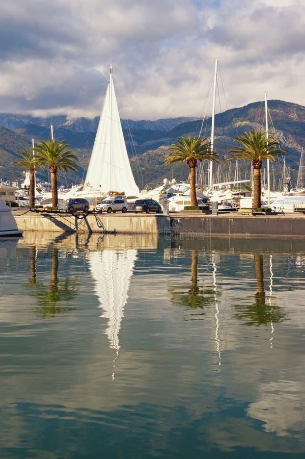 Zeilboot in Mediterrane haven Montenegro, Baai van Kotor, Tivat-stad Mening van jachtjachthaven van Porto Montenegro stock foto's