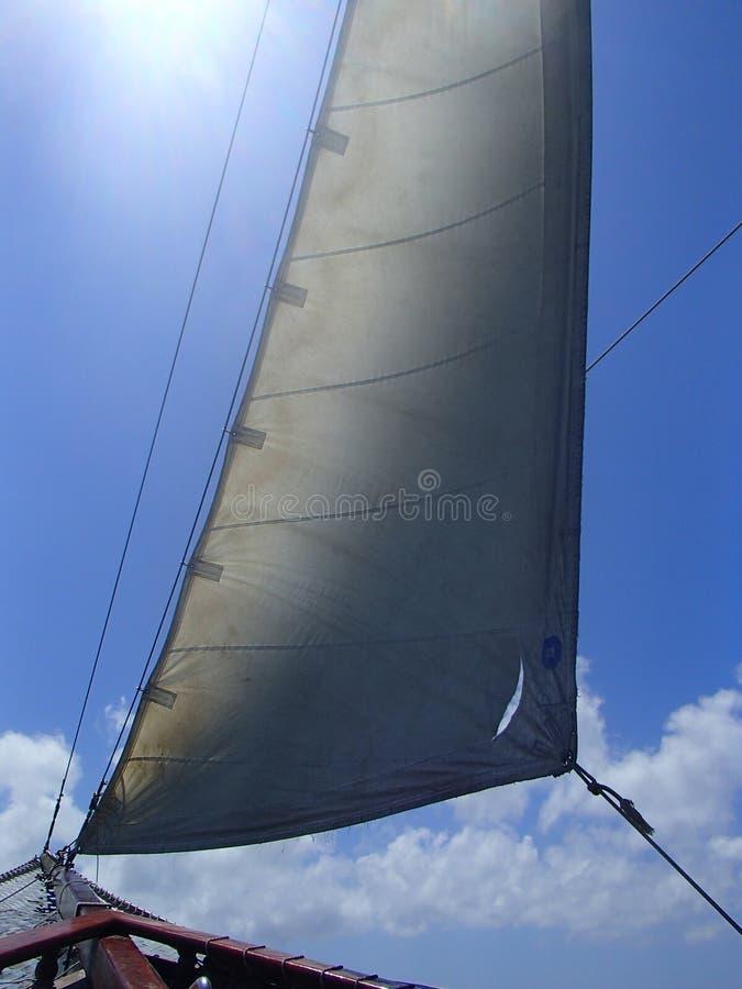 Zeilboot onder zeil stock afbeelding