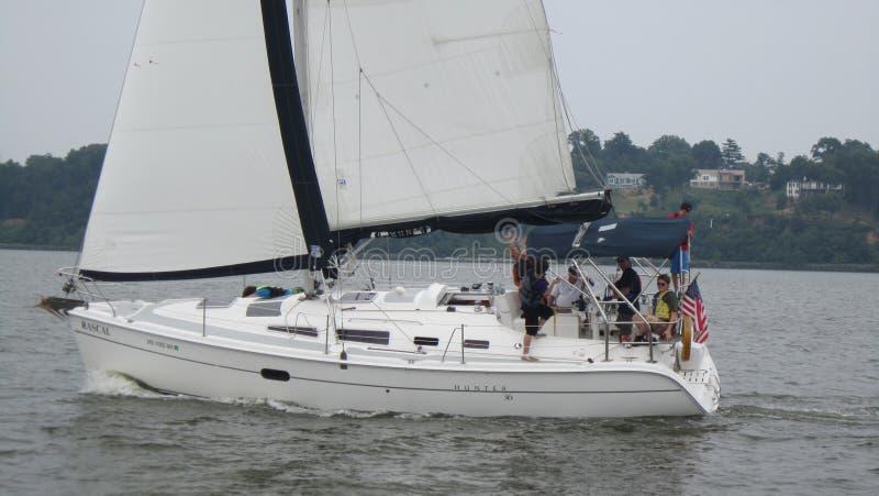 Zeilboot op Chesapeake stock foto's