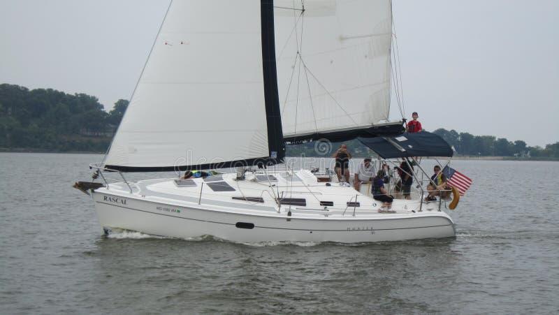 Zeilboot op Chesapeake royalty-vrije stock afbeeldingen