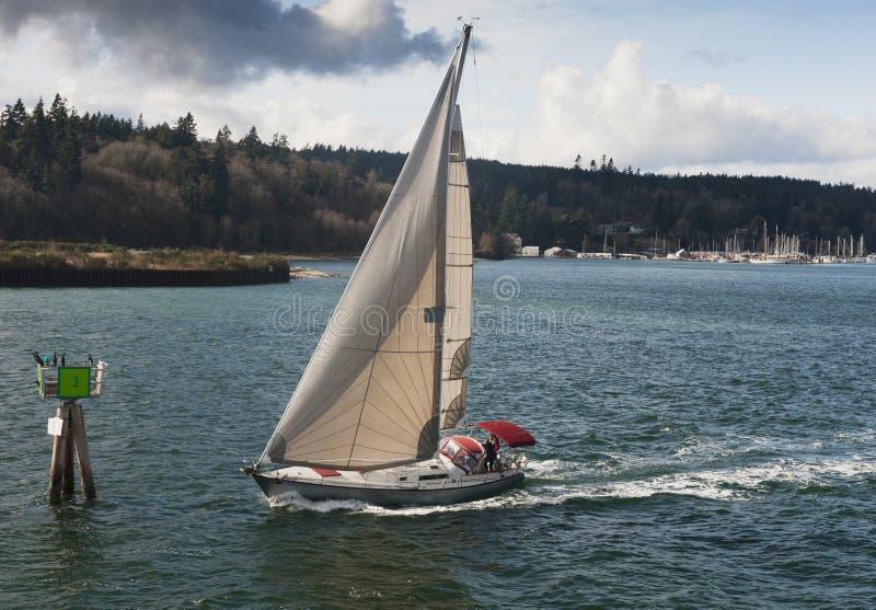 Zeilboot op Puget Sound royalty-vrije stock afbeeldingen