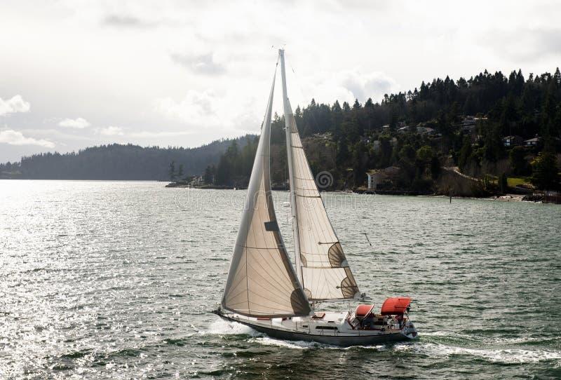 Zeilboot op Puget Sound stock foto