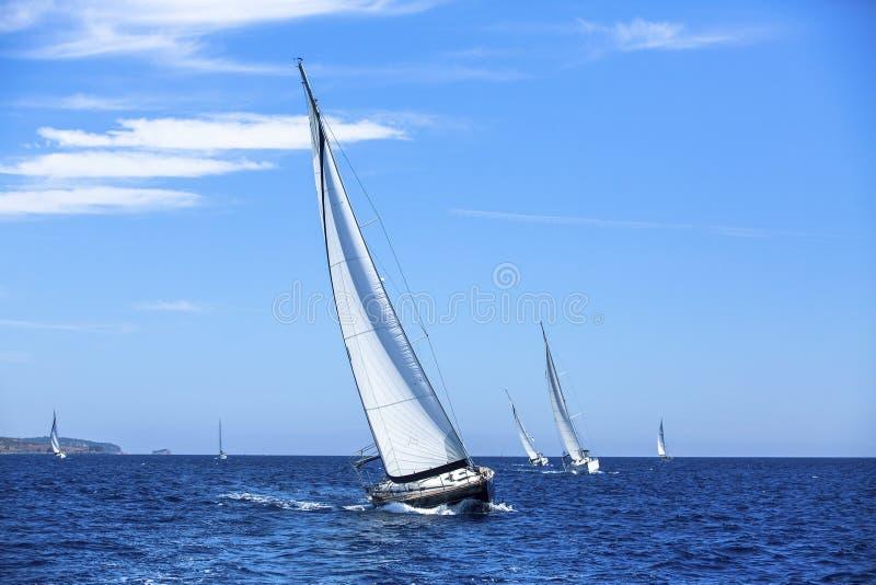 Zeilboten in het varen regatta sailing Openlucht levensstijl stock foto