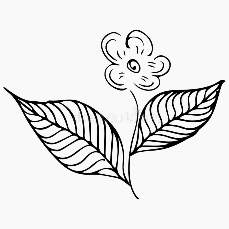Zeile Kunstmuster Vektor-Gekritzel-Hintergrund helle Farben Botanische mit Blumenblume Weiße Orchideenillustration Blaues Meer, H lizenzfreie abbildung