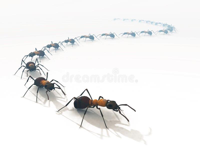 Zeile Warteschlangeweiß der Ameisen 3d trennte stockfotos