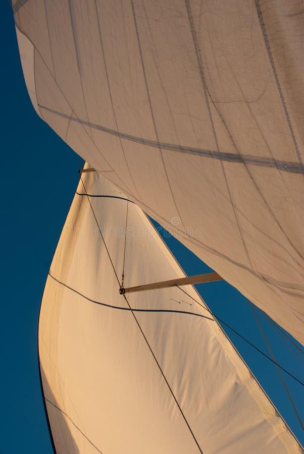 Zeilen in de Wind royalty-vrije stock afbeeldingen