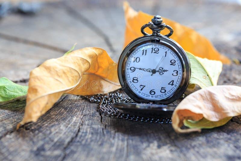 Zeit für Fall: Taschenuhr- und -BRAUNblätter stockfotos