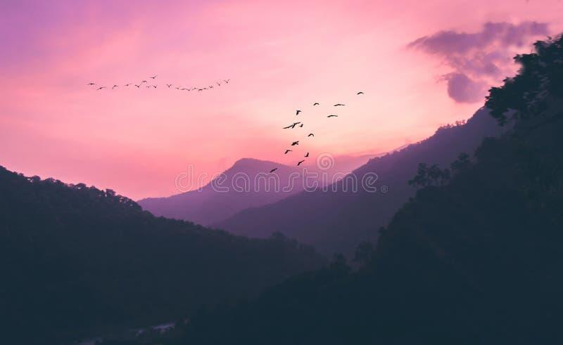 Zeit, nach Hause zu gehen ein Sonnenuntergang von Gangtok lizenzfreies stockbild