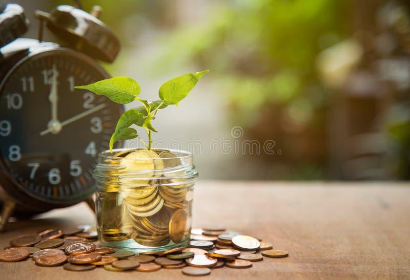 Zeit und Geld, pflanzen das Wachsen in den Einsparungens-Münzen und Warnung mit grünem Bokeh-Hintergrund, Geschäfts-Finanzkonzept stockfoto