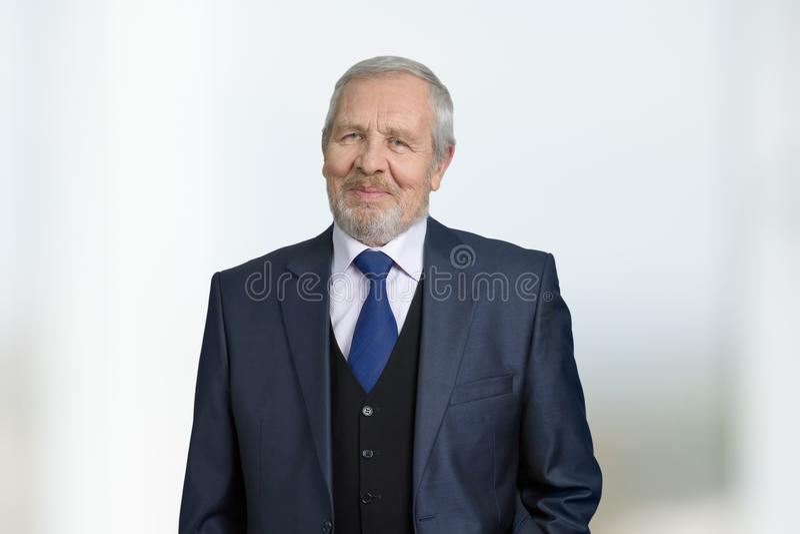 Zeker succesvol zakenmanportret royalty-vrije stock afbeeldingen