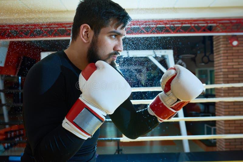 Zekere gebaarde bokser in tribune royalty-vrije stock foto
