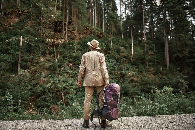 Zekere reiziger die grote rugzak houden en hoge bomen bekijken royalty-vrije stock afbeeldingen