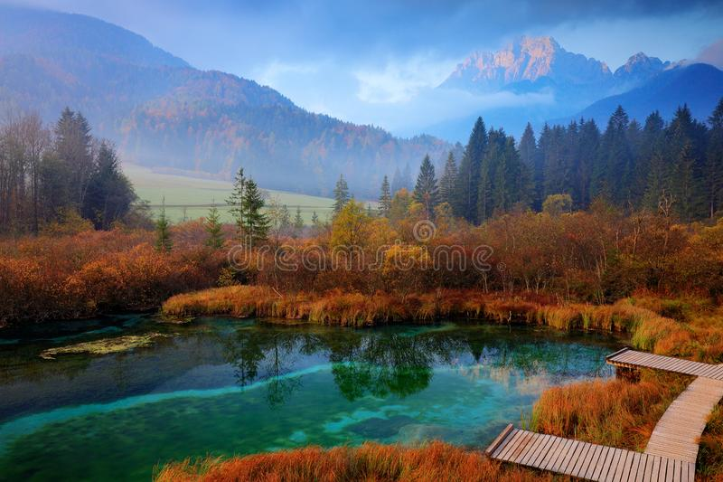 Zelenci湖自然储备,克拉尼斯卡戈拉,斯洛文尼亚 有森林的,旅行有雾的特里格拉夫峰阿尔卑斯本质上 美好的日出与 免版税库存照片