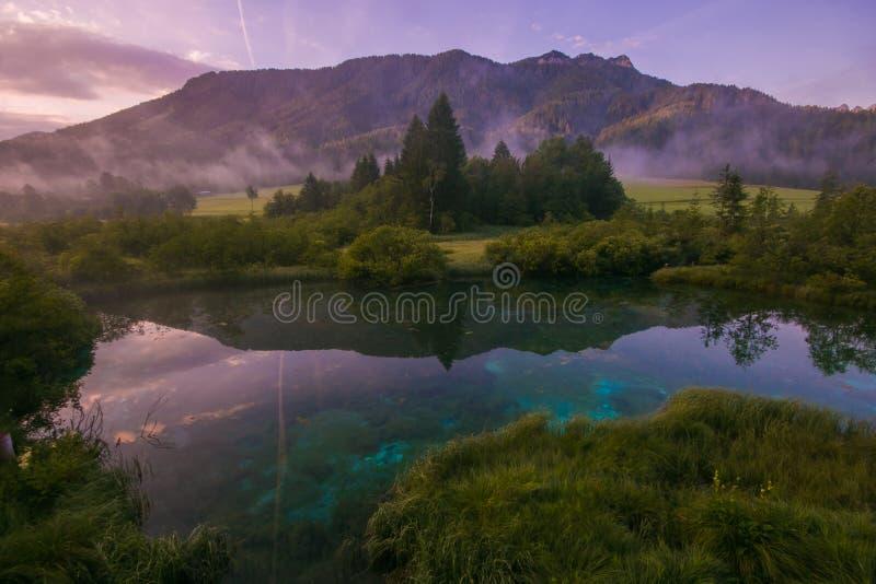 Zelenci自然储备美妙和浪漫看法在日出的在夏日,斯洛文尼亚 图库摄影