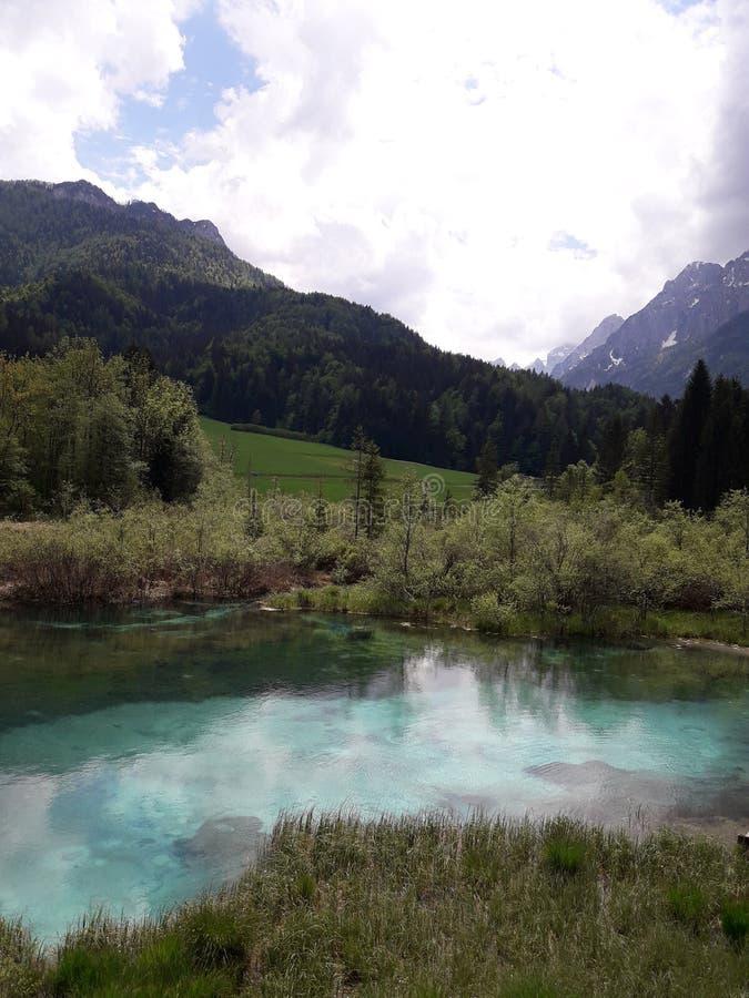 Zelenci jezioro zdjęcie royalty free