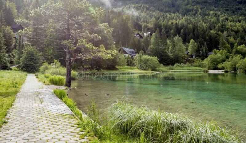 Zelenci staw blisko Kranjska Gora, Slovenia zdjęcia royalty free