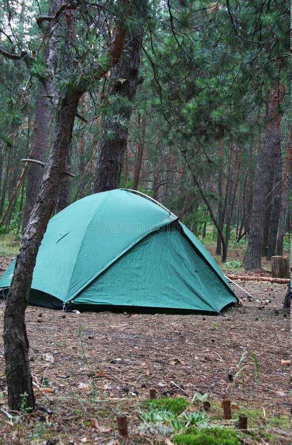 Zelt auf dem Wald stockbilder