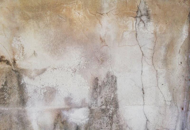 Zementwand mit Sprüngen stockfotos