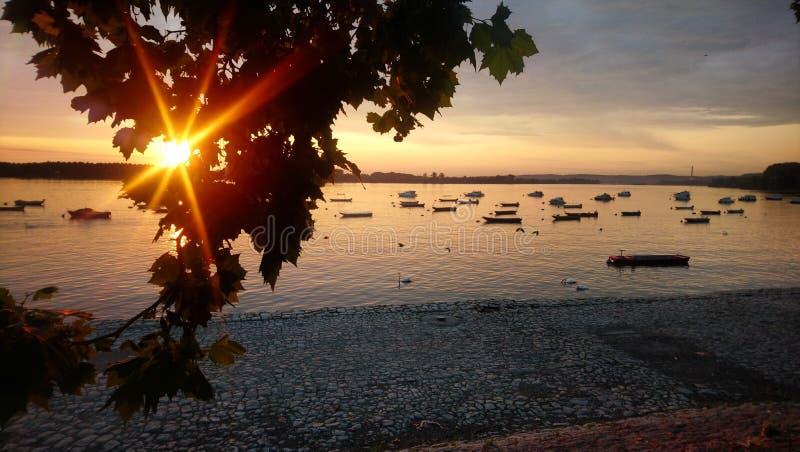 Zemun Serbia Danube. Sunrise, coast stock photography