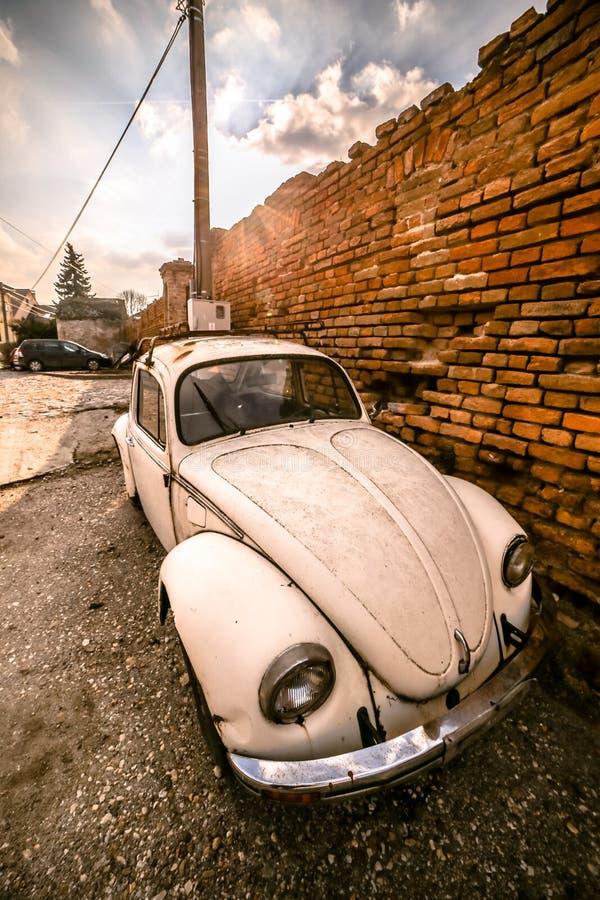Zemun, Servië - 17 Februari 2019 - Oud geroest wit die Volkswagen Beetle naast oranje bakstenen muur wordt geparkeerd stock foto's