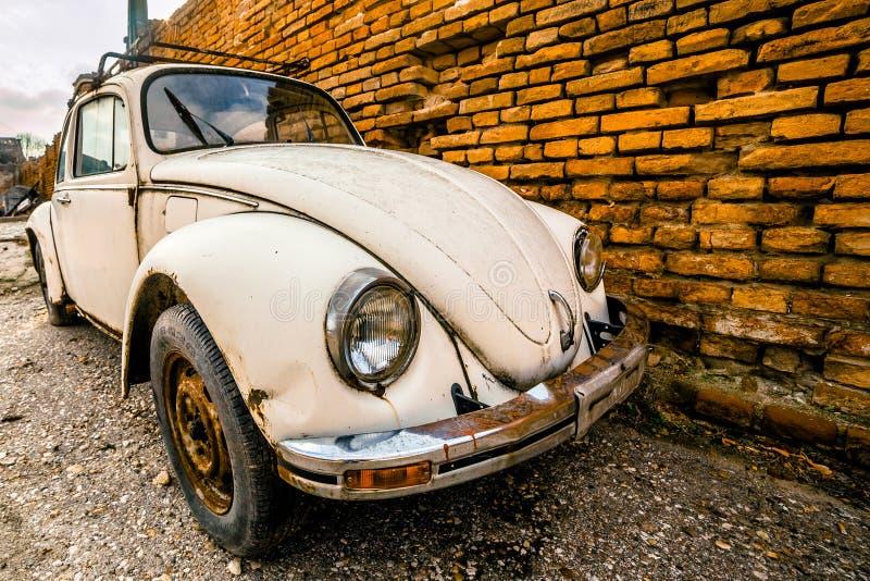 Zemun, Servië - 17 Februari 2019 - Oud geroest wit die Volkswagen Beetle naast oranje bakstenen muur wordt geparkeerd stock fotografie