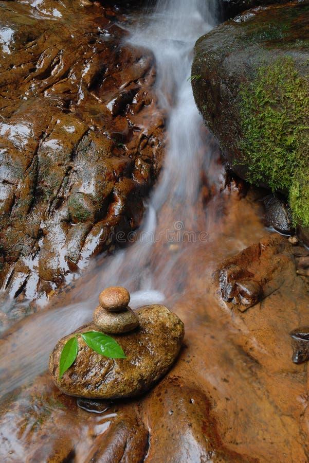 zen photos stock