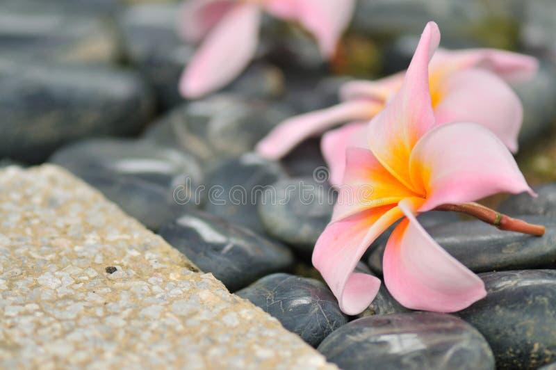 Zen abstrait I images libres de droits