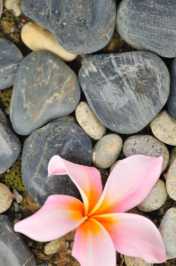 Zen abstrait III image libre de droits
