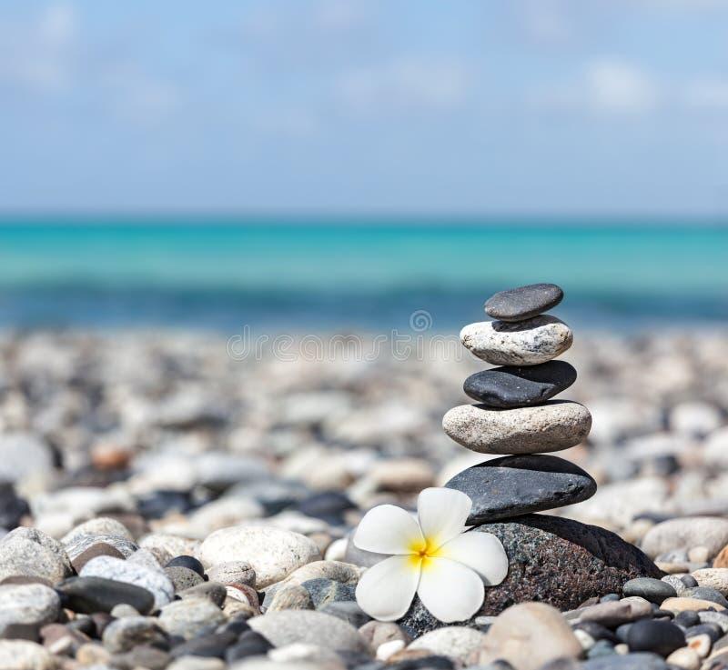Free Zen Balanced Stones Stack With Plumeria Flower Royalty Free Stock Photos - 33738088