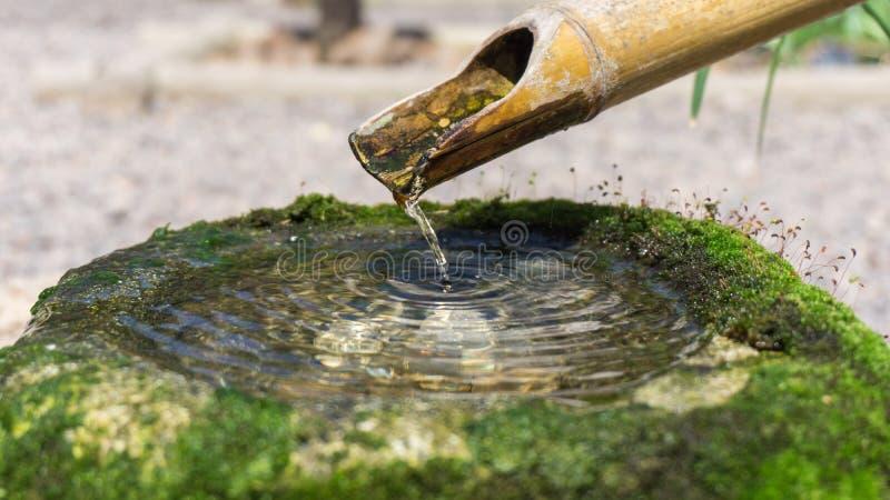 Zen bambus z wodny spadać fotografia stock