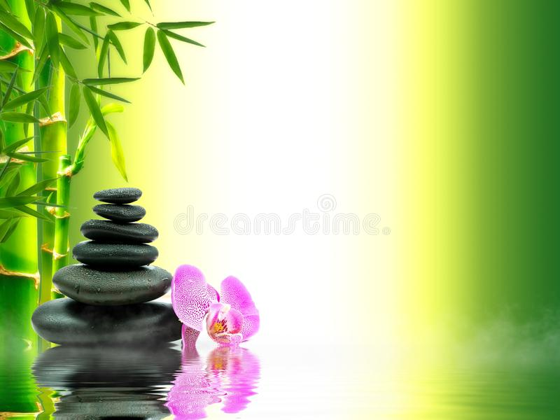 Zen basalt stones with green bamboo on water. Spa and Wellness concept. Zen basalt stones with green bamboo on water. Spa and Wellness concept stock images