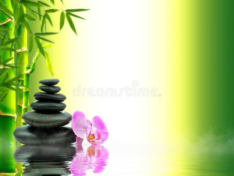Zen bazalta kamienie z zielonym bambusem na wodzie czarny pojęcia kwiatu zdrój dryluje ręcznika wellness obrazy stock