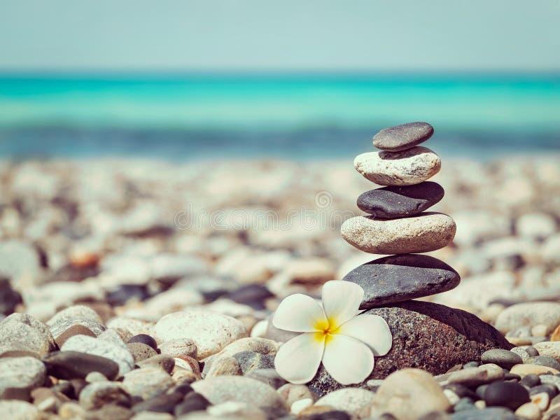 Zen evenwichtige stenenstapel met plumeriabloem royalty-vrije stock afbeeldingen