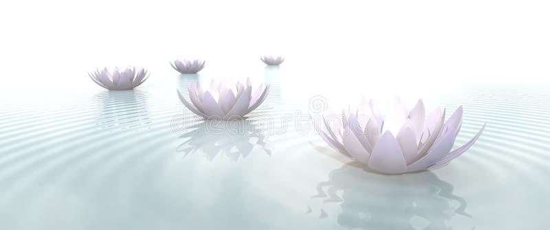 Zen Flowers na água no tela panorâmico ilustração do vetor