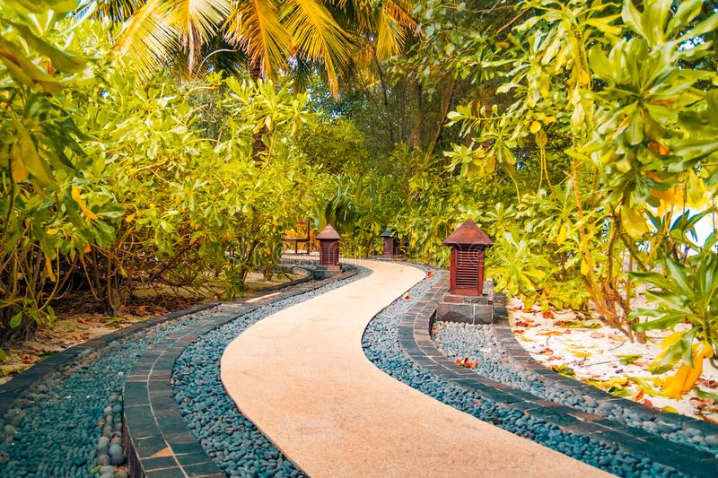 Japanese zen garden and palm trees and stones pathway stock photo
