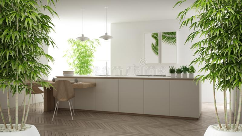 Zen interior with potted bamboo plant, natural interior design concept, minimalist white kitchen with dining table and parquet stock illustration
